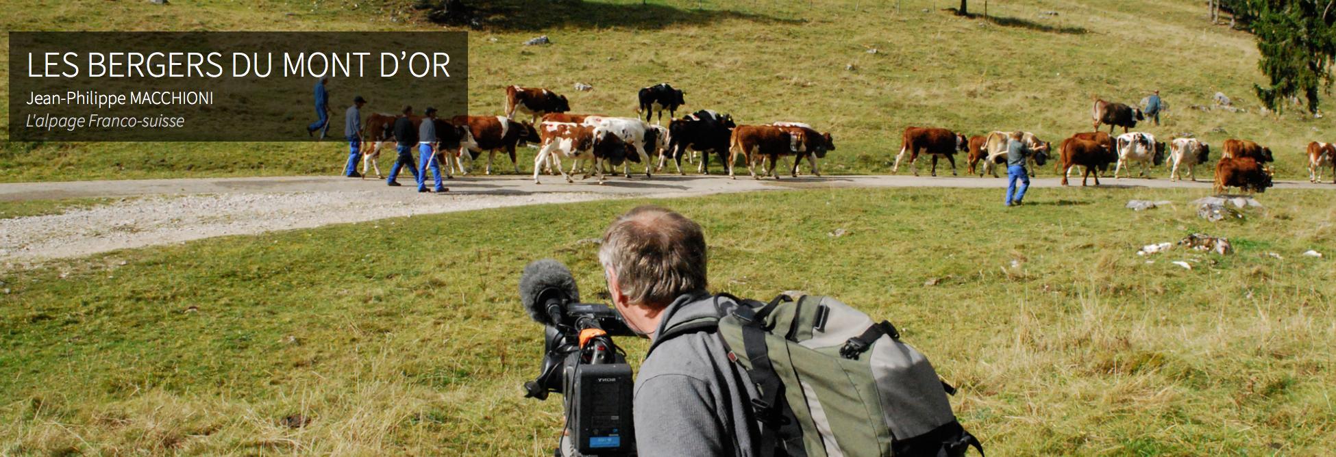 Audiovisuelle Übersetzung für Vie des Hauts Production