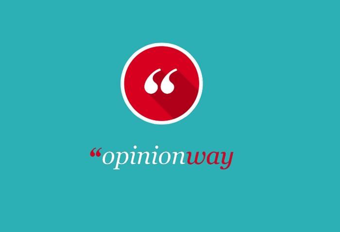 Marketing-Übersetzung Opinion Way